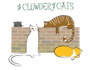 Ian-Rogers-a-Clowder-of-Cats (1)